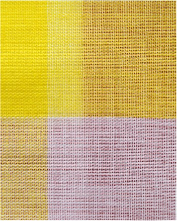 Michelle Grabner 'Untitled' 2014, archival inkjet print at Anne Mosseri-Marlio Galerie